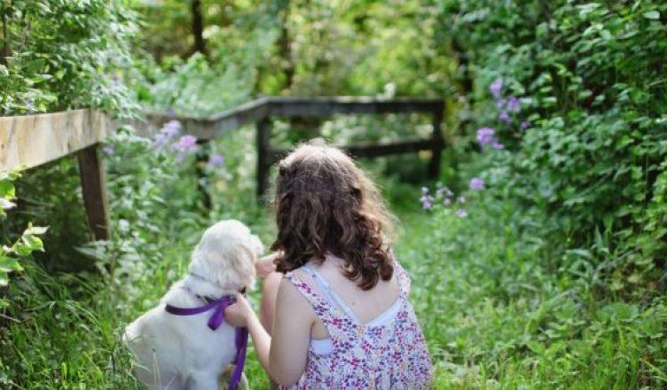 Полнота и радость жизни: универсальный генератор счастья